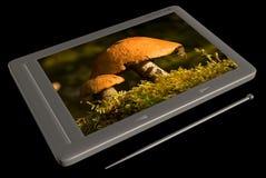 Tecnología y naturaleza Fotos de archivo libres de regalías