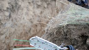 Tecnologia de comunicação da fibra ótica video estoque