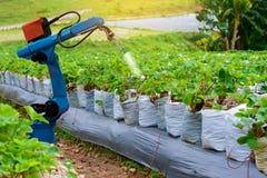 Tecnologia di lavoro del braccio meccanico dei robot del macchinario agricolo immagini stock libere da diritti