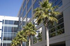 Tecnologia tropicale 2 Fotografia Stock
