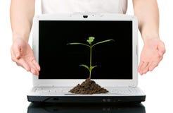 Tecnologia verde offerta immagini stock
