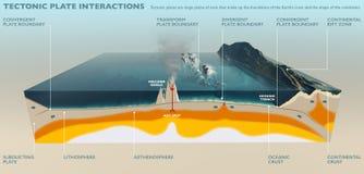 Tectonische platen van de korst van de Aarde vector illustratie