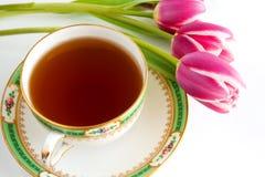 tecup tulipany Zdjęcie Royalty Free