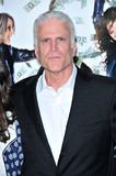 Ted Danson Royalty Free Stock Photography