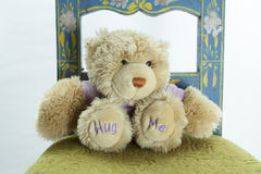 Ted. Hug me, love me, play with me, love, kids, emotions Royalty Free Stock Photo