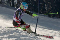Ted Ligety Royalty Free Stock Image