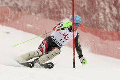 Ted Ligety Stock Photography