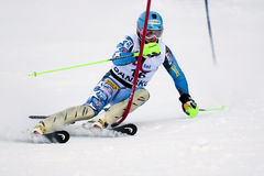 Ted Ligety Royalty Free Stock Photo