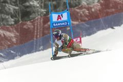 Ted Ligety foto de stock royalty free