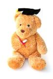 Ted listo Fotografía de archivo