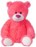 Ted niedźwiedź Zdjęcia Royalty Free