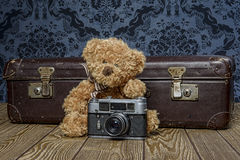 Tedd bear photographer Stock Photo