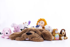 teddies Foto de Stock Royalty Free