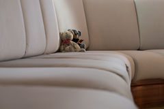 Teddies on a Cruiser Royalty Free Stock Images