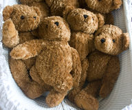 Teddies Stock Photos