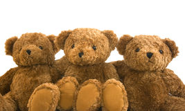 Teddies Stock Photo