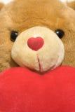 teddy βαλεντίνος Στοκ φωτογραφία με δικαίωμα ελεύθερης χρήσης