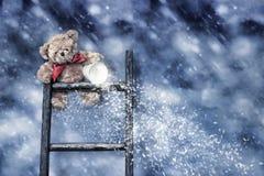 Teddy που ρίχνει το χιόνι στοκ φωτογραφίες