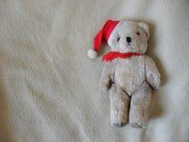 Χαριτωμένος χνουδωτός άσπρος teddy αντέχει στοκ εικόνες