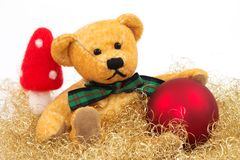 Teddy 1. Teddy and a red Christmas ball and a mushroom with a white background Stock Images