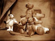 5 teddy στοκ φωτογραφία με δικαίωμα ελεύθερης χρήσης