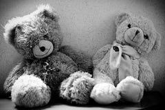 teddy Στοκ Φωτογραφίες