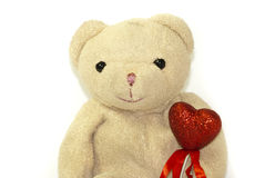 Teddy Royalty Free Stock Image