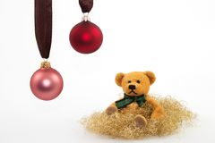 Teddy 2. Teddy looks at two Christmas balls with a white background Royalty Free Stock Images