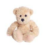 Teddy Royalty Free Stock Photos