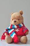 Teddy Stock Image