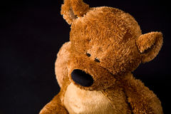 Teddy Royalty Free Stock Images