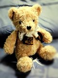 teddy Fotografía de archivo libre de regalías