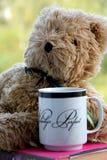 teddy Imagen de archivo libre de regalías