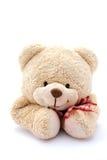 αντέξτε το πορτρέτο teddy Στοκ Φωτογραφία