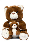 Teddy. Lovely brown plush teddy bear Stock Images