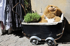 Teddy in baby buggy Stock Photos