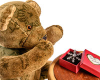 Teddy Bear é deleitado com presente Foto de Stock Royalty Free
