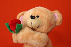 Teddy bear #1 Stock Image