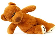 Teddy bear Royalty Free Stock Image
