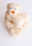 Teddy bear. Funny teddy bear in white background Stock Images