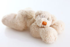 Teddy bear. Funny teddy bear in white background Royalty Free Stock Photography