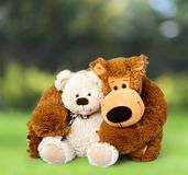 Teddy Bear photo libre de droits