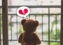 Teddy Bear Foto de Stock