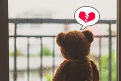 Teddy Bear Fotos de Stock Royalty Free