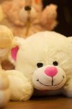 Teddy bear. Stuffed white teddy bear toy with a pink nose and ears Stock Photography
