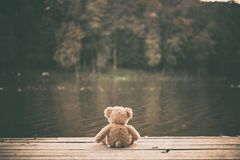 Free Teddy Bear Stock Photography - 123400972