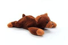Teddy bear. On a white background Royalty Free Stock Photography