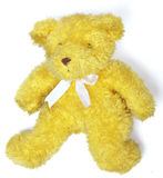 Teddy Bear. Yellow Teddy bear with neutral white background royalty free stock photography