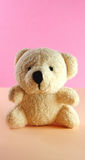Teddy bear. On pink background royalty free stock photos