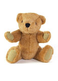 Teddy Bear. On a plain white background Stock Photography
